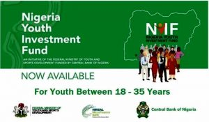 Nigerian Youth Investment Funds (NYIF) Application Portal