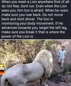 """""""If You See A Lion,Don't Run, Hold The Left Leg, That's Where The Power Is"""" Motivational Speaker Advises"""